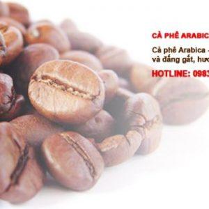 arabica-robusta-khong-tam-28