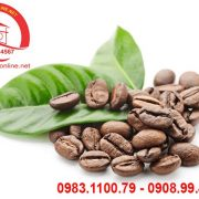 ca-phe-arabica-so-07-1 – Copy