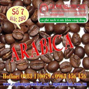 so-7-arabica-1