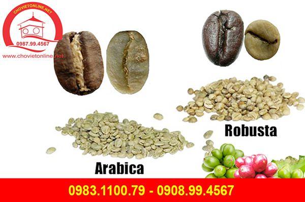 ca-phe-arabica-robusta-khong-tam-28-1