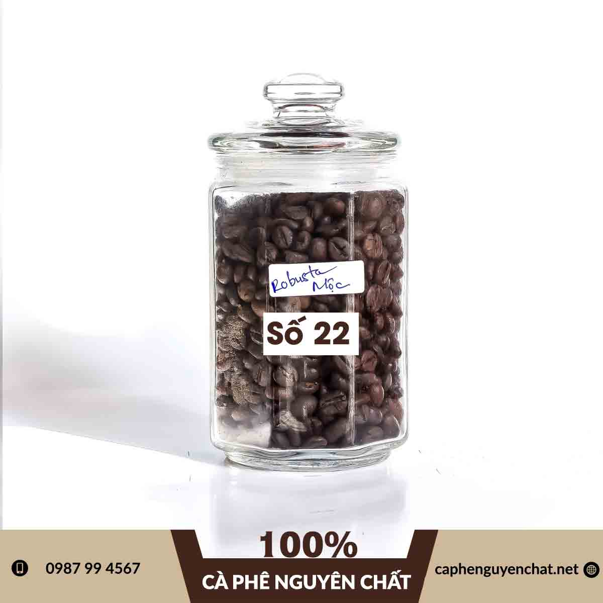 ca-phe-robusta-moc-so-22