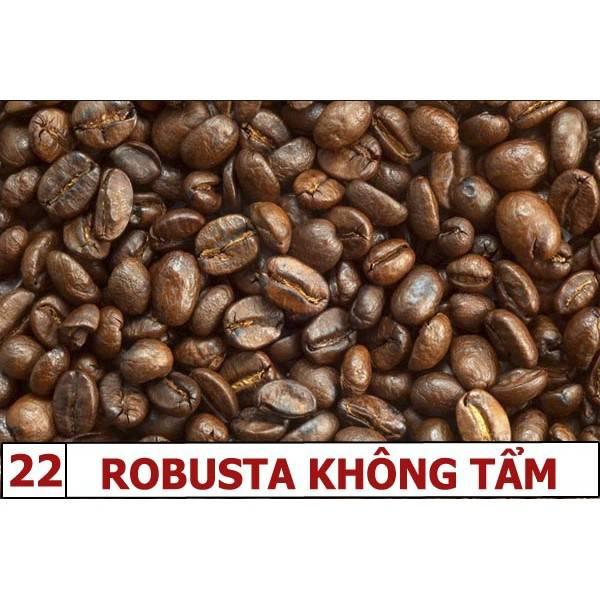 robusta-khong-tam-22