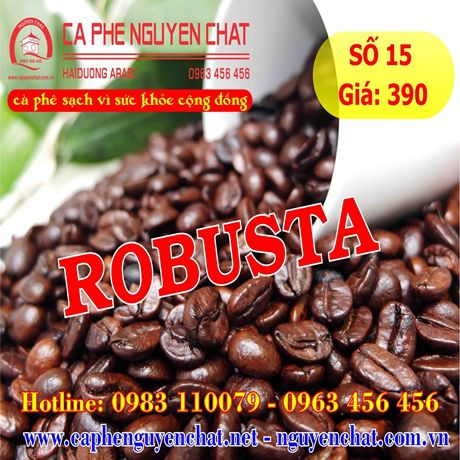 so-15-ca-phe-robusta-1