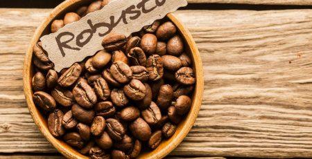 Giá café hạt Robusta khá bình dân.