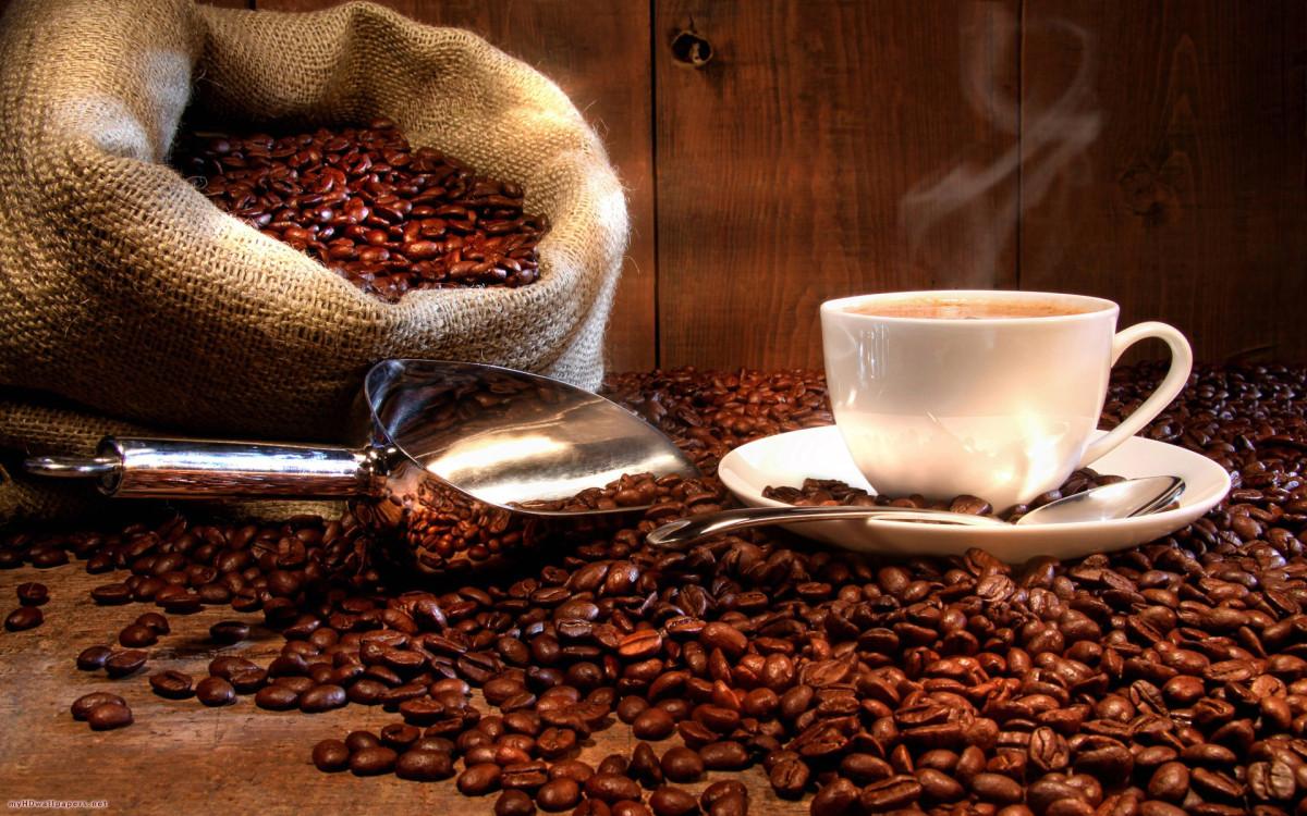 Giá café hạt Moka luôn rất cao và được săn đón.