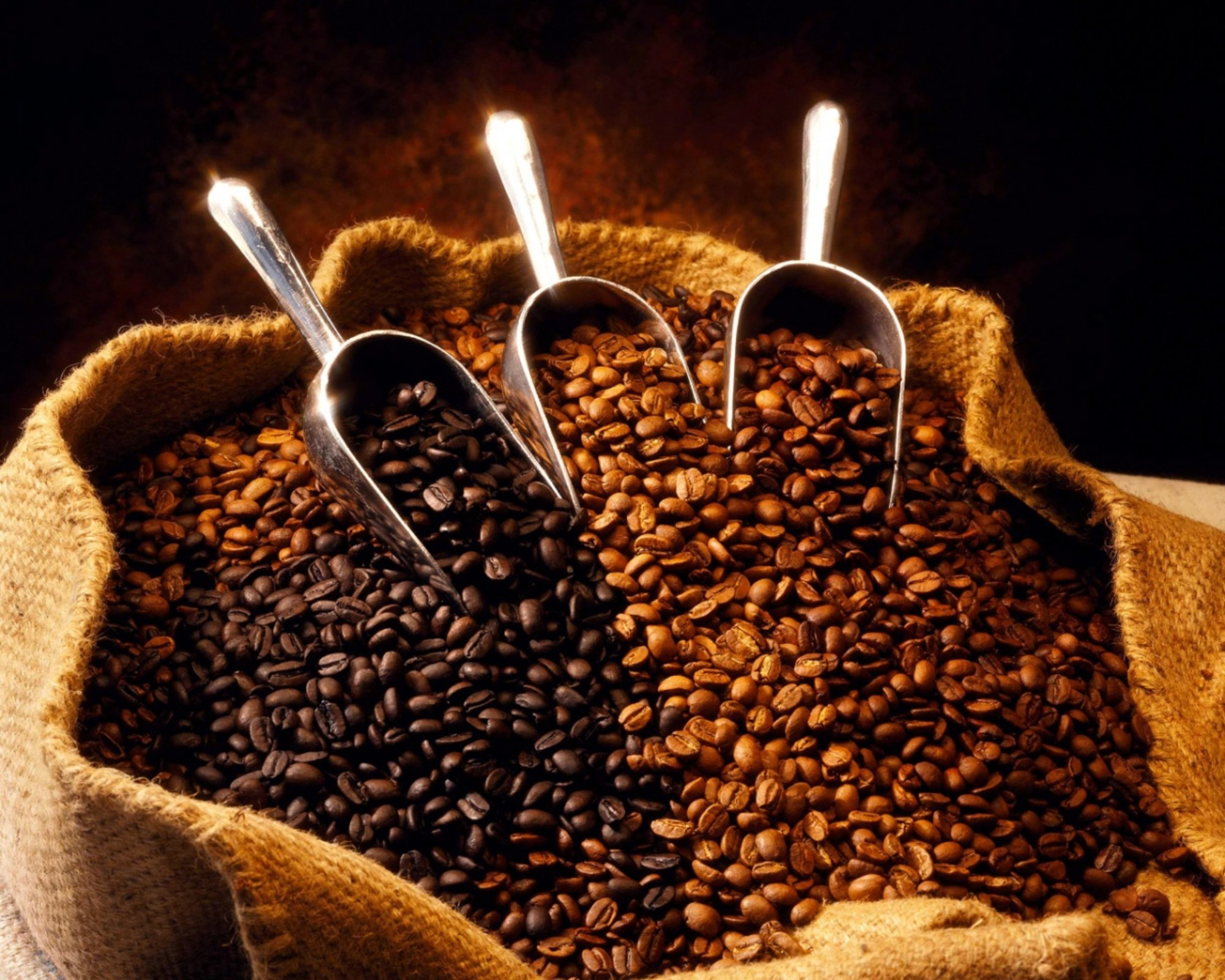 Giá café hạt rang chịu tác động từ nhiều yếu tố.