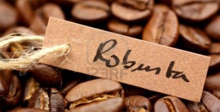 Việt Nam là quốc gia xuất khẩu cà phê Robusta lớn nhất thế giới.