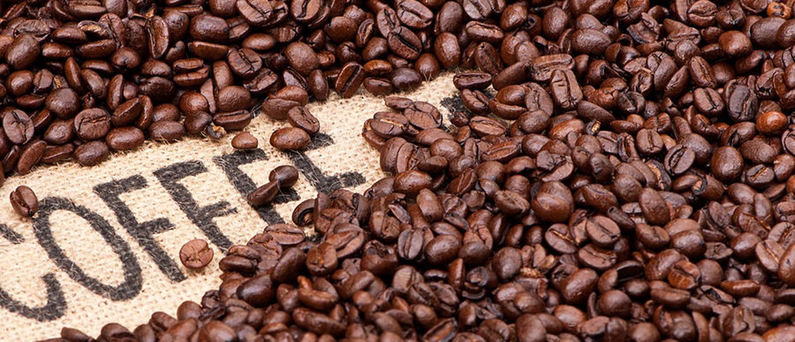 Giá thành cà phê Robusta nhìn chung khá dễ chịu.