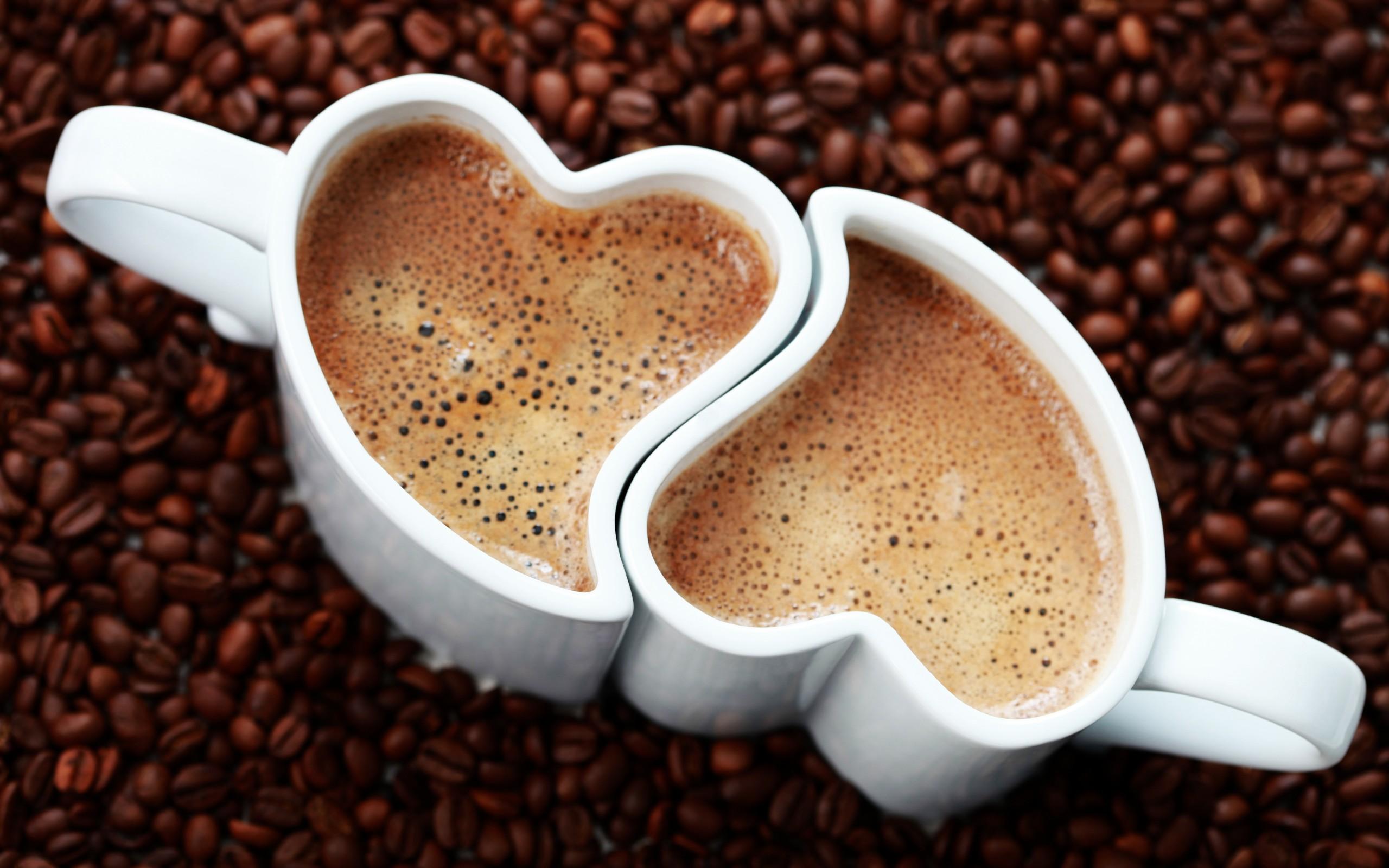 NGUYEN CHAT COFFE luôn cung cấp các sản phẩm cà phê chất lượng tốt nhất.