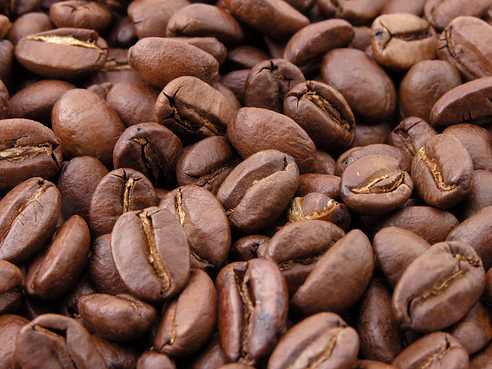 Cà phê nguyên chất dạng hạt và bột