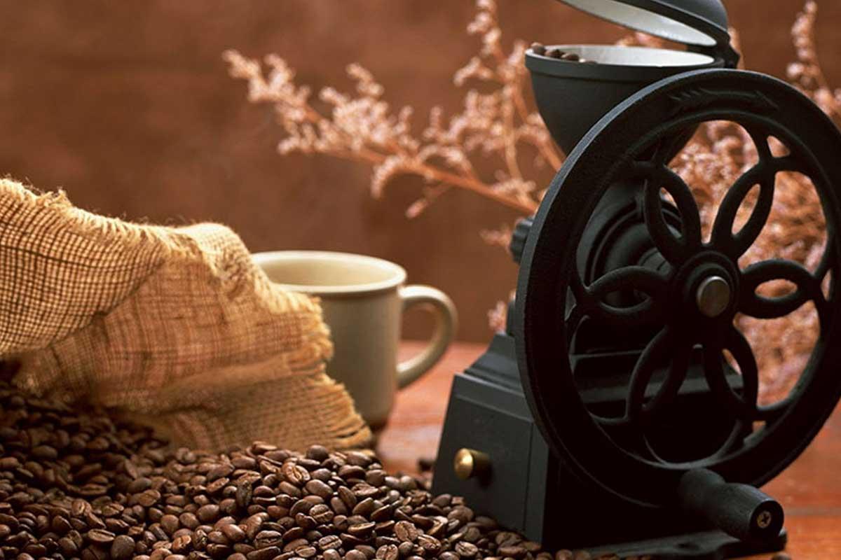 Rang xay café