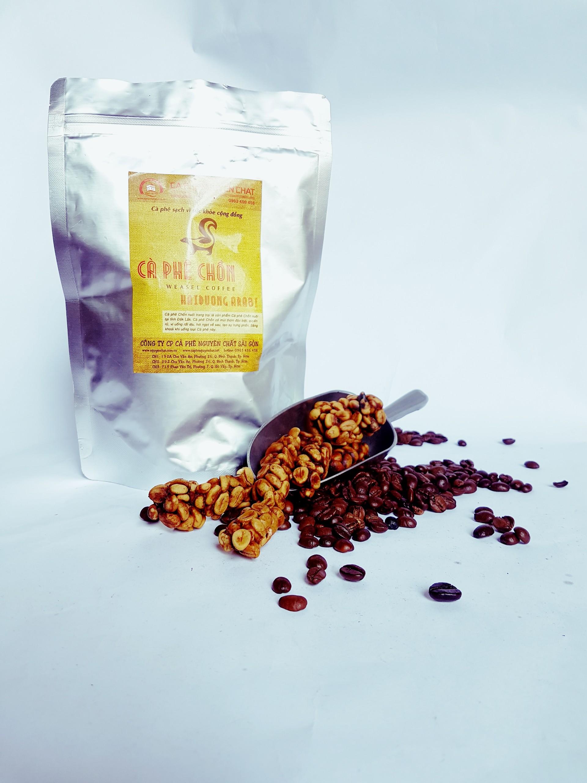 Khi cho chồn ăn, phải lựa chọn những trái cà phê chín đỏ mọng, thơm ngon nhất