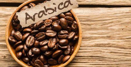 Cà phê hạt Arabica là gì?