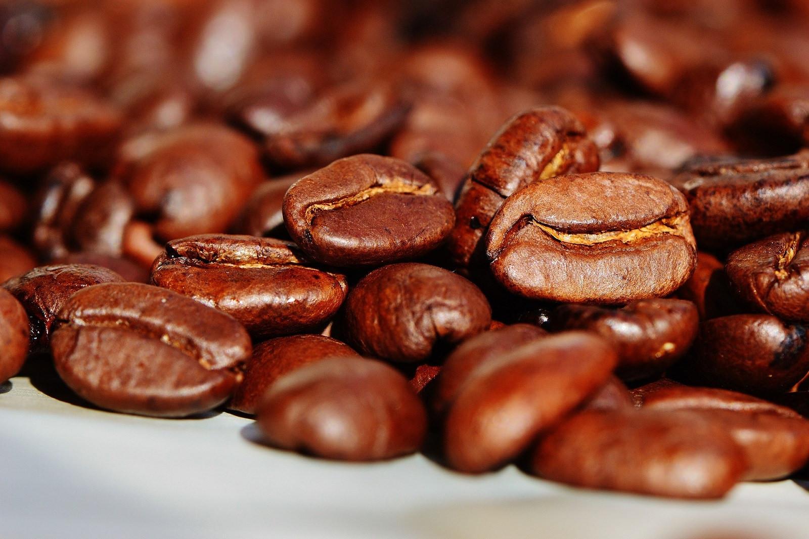 Hương vị cà phê quyến rũ Arabica