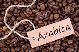 Có bao nhiêu loại cà phê?