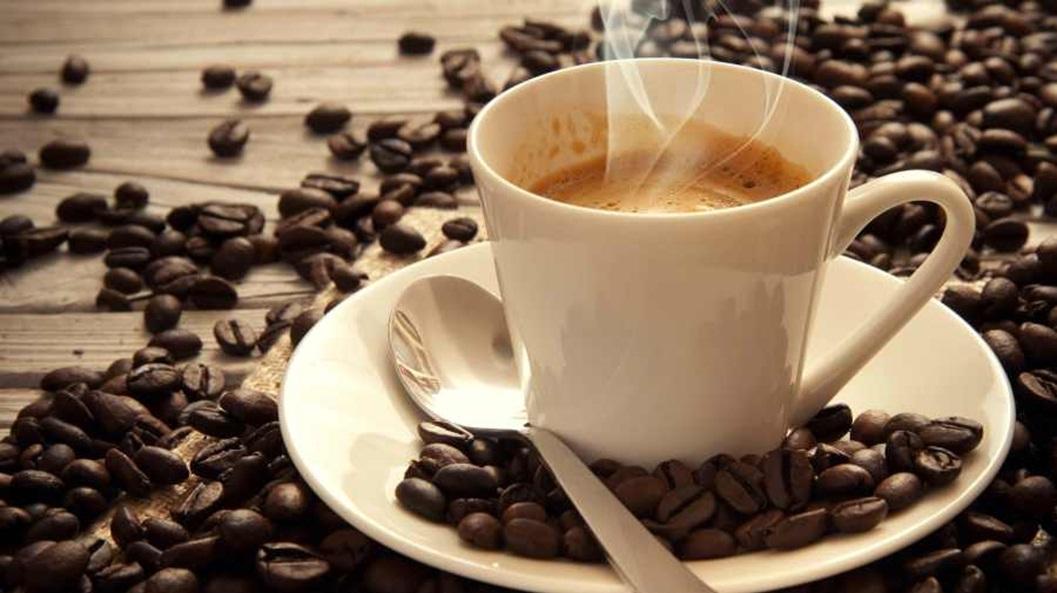Gía cà phê Robusta và Arabica