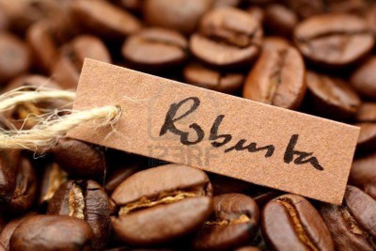 Tách cafe Robusra đậm đà, sây lắng lòng người