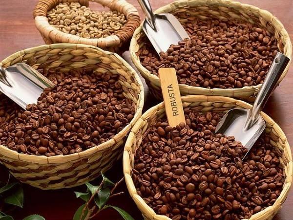 Cà phê nguyên chất Buôn Ma Thuật – thức uống của đam mê