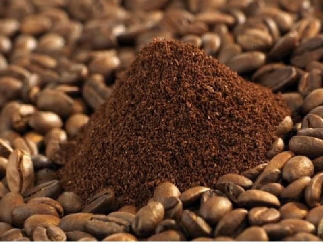 Quy trình chế biến cà phê chồn hết sức kỳ công