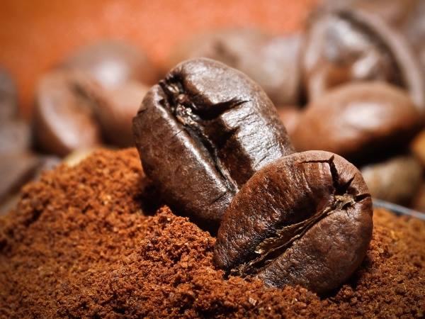 Rang cà phê là công đoạn rất quan trọng quyết định đến chất lượng của cà phê thành phẩm