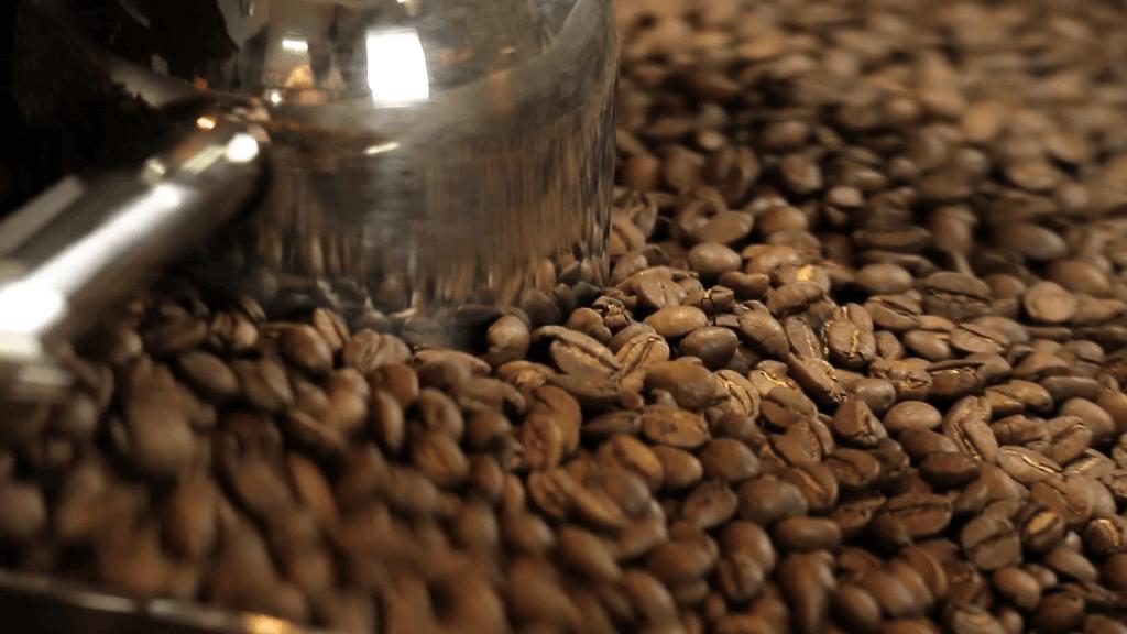 Cafe arabica với đa dạng chủng loại