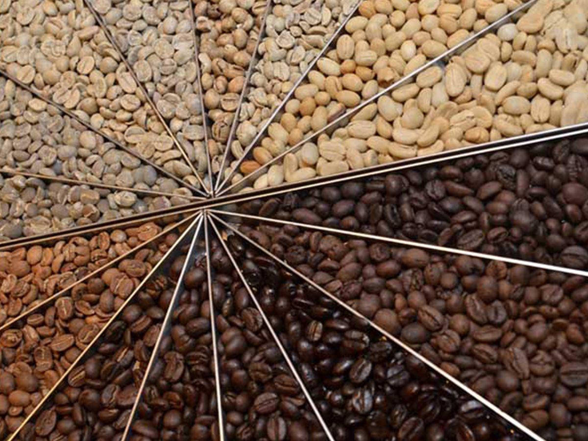 Trên thế giới có rất nhiều loại hạt cà phê